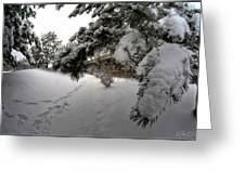 Queen City Winter Wonderland After The Storm Series 0029 Greeting Card