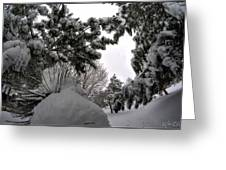 Queen City Winter Wonderland After The Storm Series 0031 Greeting Card