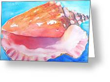 Queen Conch Shell Greeting Card