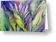 Queen Emma's Lily Blossom Greeting Card