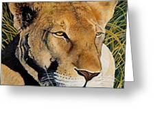 Queen Of The African Savannah Greeting Card