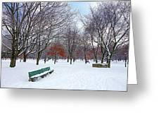 Queen's Park Greeting Card