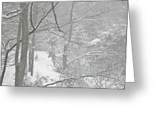 Querida In The Snow Storm Greeting Card
