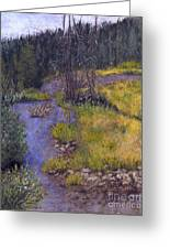Quiet Creek Greeting Card by Ginny Neece