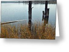 Quiet Day On Yellowstone's Goose Lake Greeting Card
