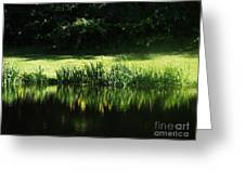 Quiet Reflection Greeting Card