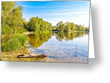 Quiet River With Trees Greeting Card