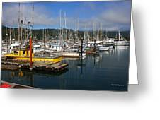 Quiet Time At The Harbor Greeting Card