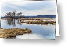 Quiet Wetlands Greeting Card