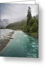 Quinault Serenity Greeting Card