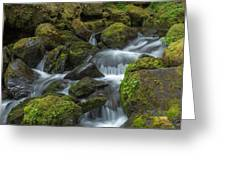 Quinault Waterfall Greeting Card