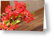 Quince Blossoms Greeting Card