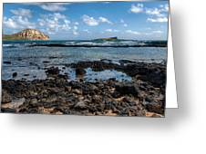 Rabbit Island Tide Pools Greeting Card