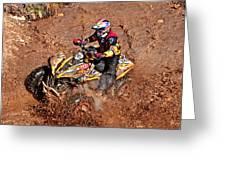 Racer #241 Greeting Card