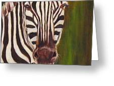 Racer, Zebra Greeting Card