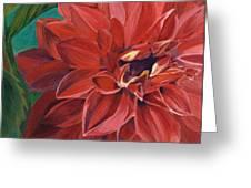 Rachael's Dahlia Greeting Card