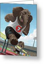 Racing Running Elephants In Athletic Stadium Greeting Card by Martin Davey