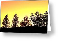 Radiance Of Nature Greeting Card