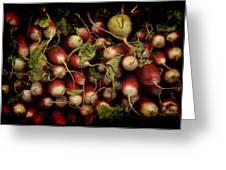 Flemish Radish Art Greeting Card