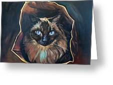 Cat Painting. Ragdoll Cat The Cat's In The Bag Greeting Card