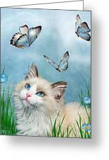 Ragdoll Kitty And Butterflies Greeting Card