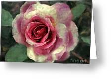 Ragged Satin Rose Greeting Card