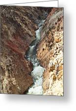 Raging River In Yellowstone Greeting Card