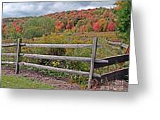 Rail Fence In Autumn Greeting Card