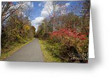 Rail Trail Greeting Card
