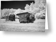 railcars in infrared light in the forest in Netherlands Greeting Card