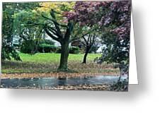 Rain And Leaf Ave Greeting Card