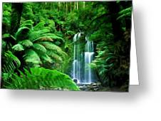 Rain Forest And Waterfall Greeting Card