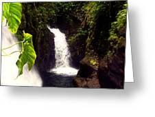 Rain Forest Grotto With 2 Waterfalls Greeting Card