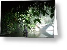 Rain Forest Overhang Greeting Card