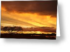Storm At Dusk 2am-108330 Greeting Card