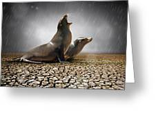 Rain Relief Greeting Card