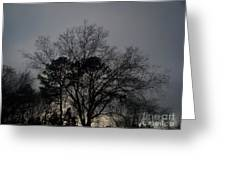 Rain Storm Clouds And Trees Greeting Card