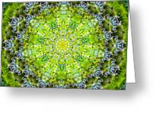 Lluvia Mandala Greeting Card