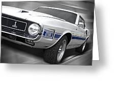 Rain Won't Spoil My Fun - 1969 Shelby Gt500 Mustang Greeting Card