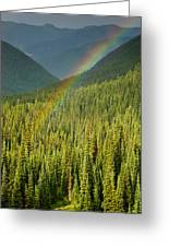 Rainbow And Sunlit Trees Greeting Card