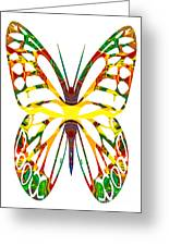 Rainbow Butterfly Abstract Nature Artwork Greeting Card
