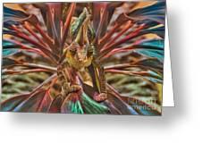 Rainbow Chameleon Greeting Card