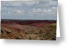 Rainbow Desert Greeting Card