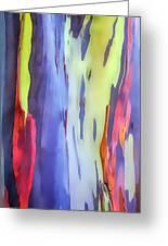 Rainbow Eucalyptus 2 Greeting Card