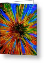 Rainbow Exuberance Greeting Card