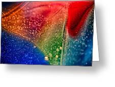 Rainbow Fishtail Greeting Card