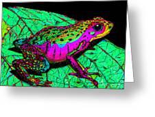 Rainbow Frog 3 Greeting Card