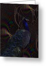 Rainbow Peacock Fractal Greeting Card