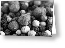 Rainbow Peppercorn Macro Black And White Greeting Card