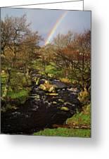 Rainbow River Greeting Card